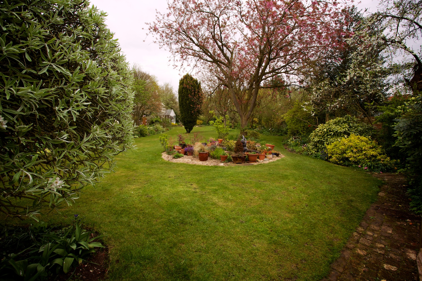 Long shots of the garden the blooming garden for Trees for back garden