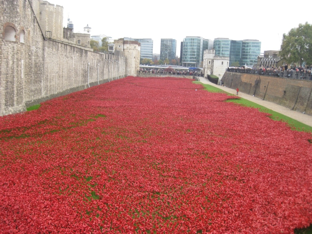 The moat filled with porcelain poppies