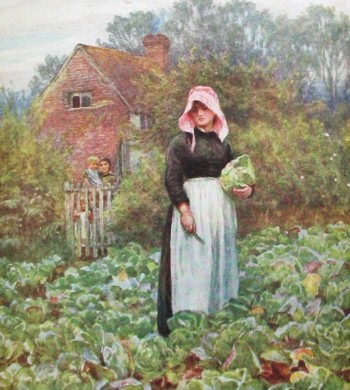 Cabbage Cutting Helen Allingham