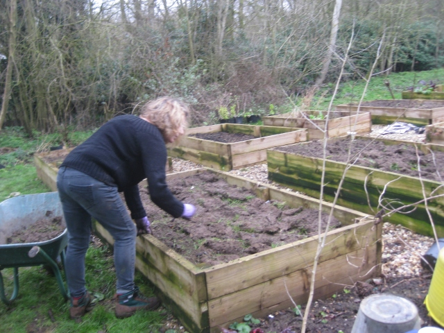 Julie filling the veg boxes with upside down turf.