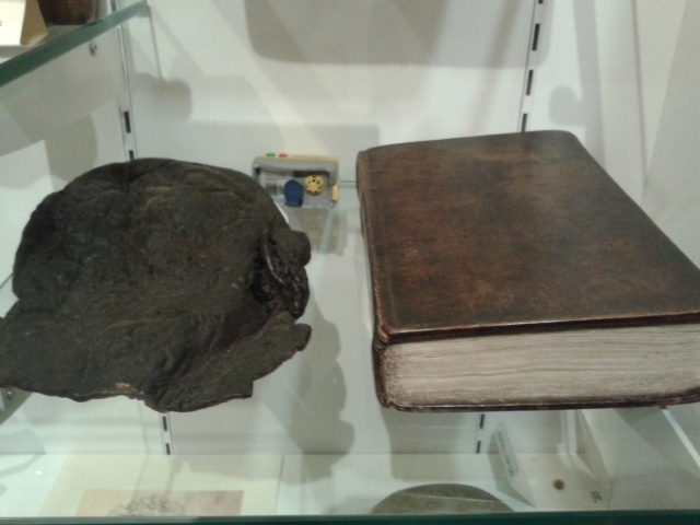 Corder's scalp and a book made out of his skin. Moyse's Hall Museum. Bury St. Edmunds.