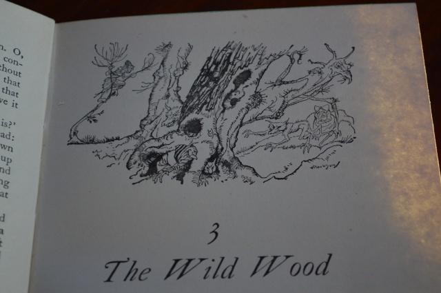 Wnnd in the \Willows. Illustration Arthur Rackham.