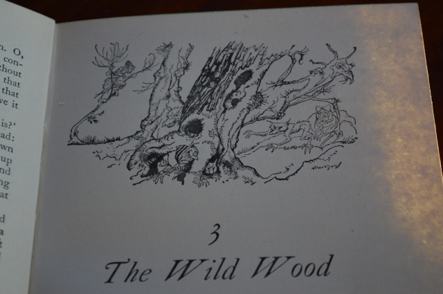 Wnnd in the \Willows. Illustration Arthur Rackham.