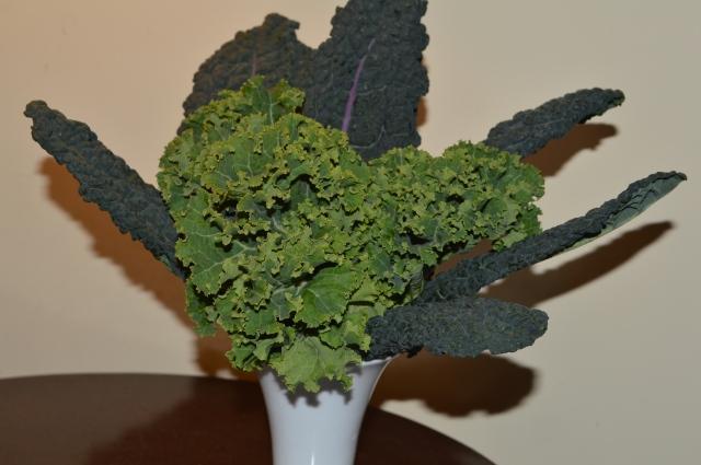 Kale. Chloris